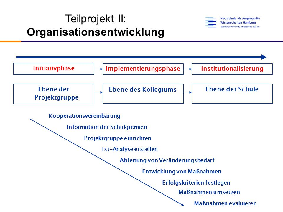 Implementierungsphase Institutionalisierung