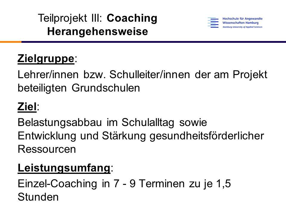 Teilprojekt III: Coaching Herangehensweise