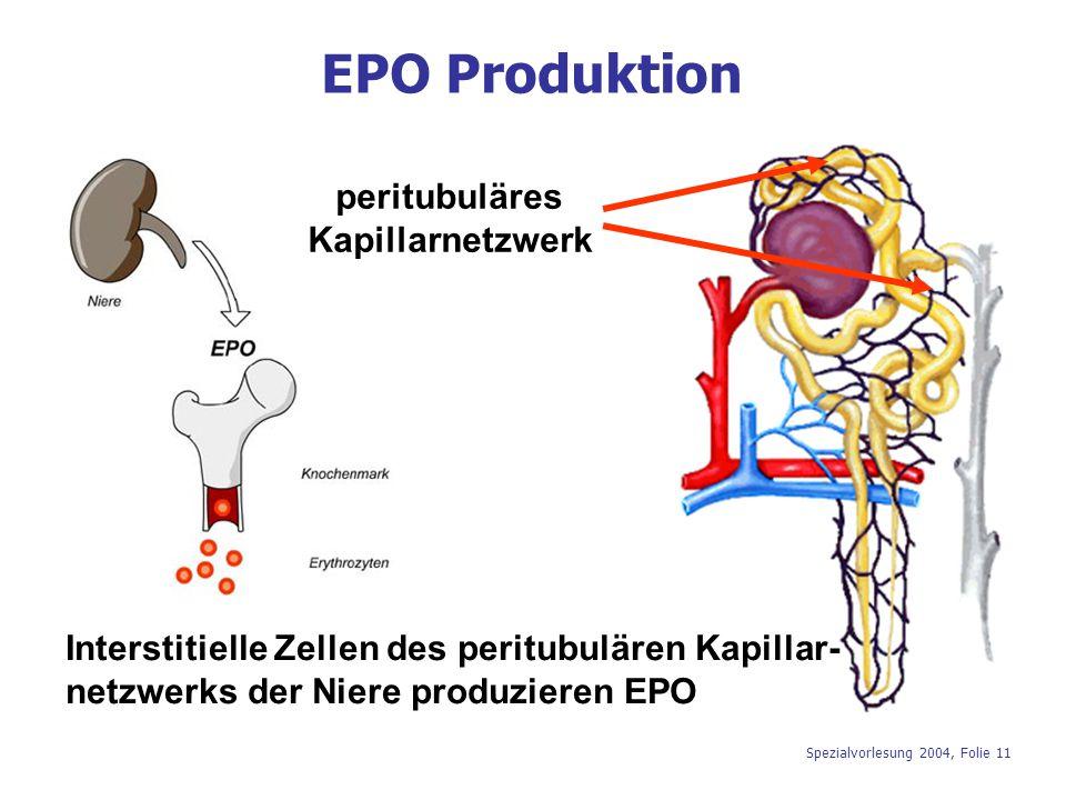 EPO Produktion peritubuläres Kapillarnetzwerk