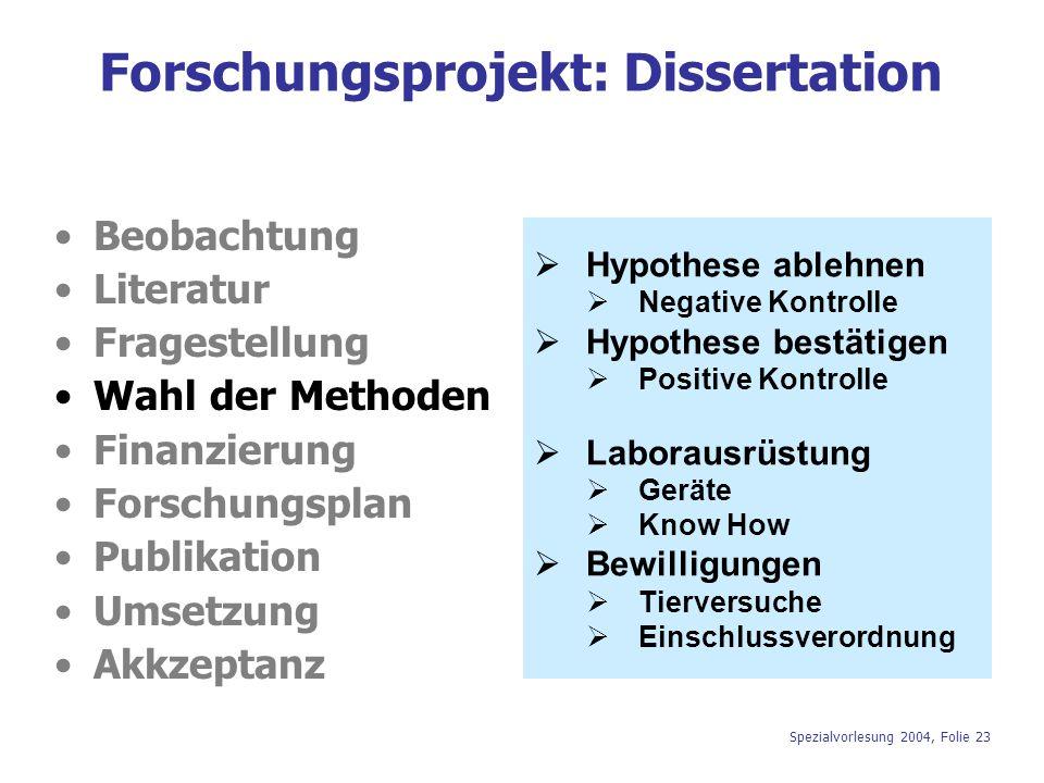 Forschungsprojekt: Dissertation