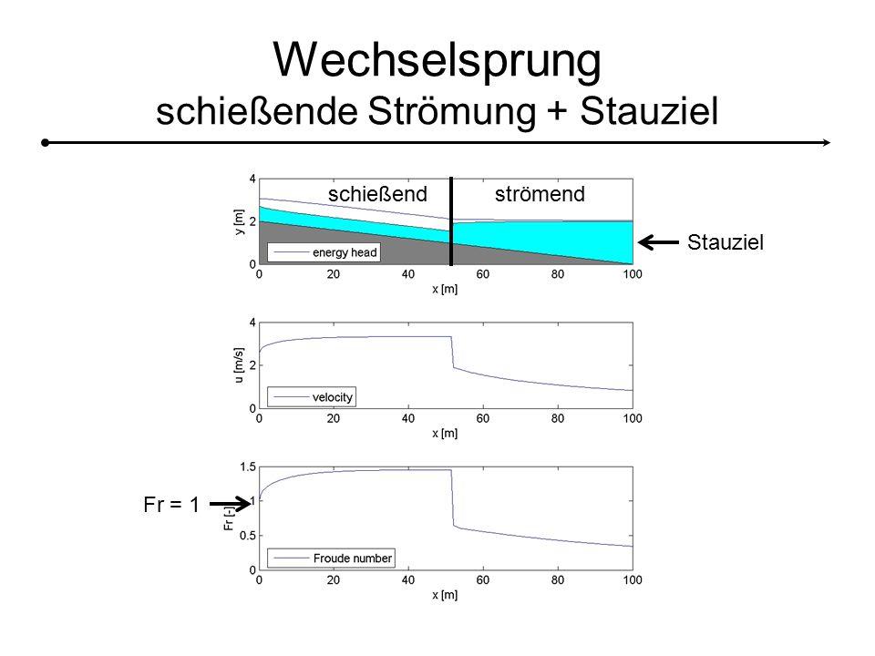 Wechselsprung schießende Strömung + Stauziel