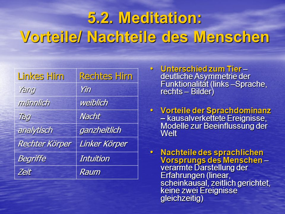 5.2. Meditation: Vorteile/ Nachteile des Menschen