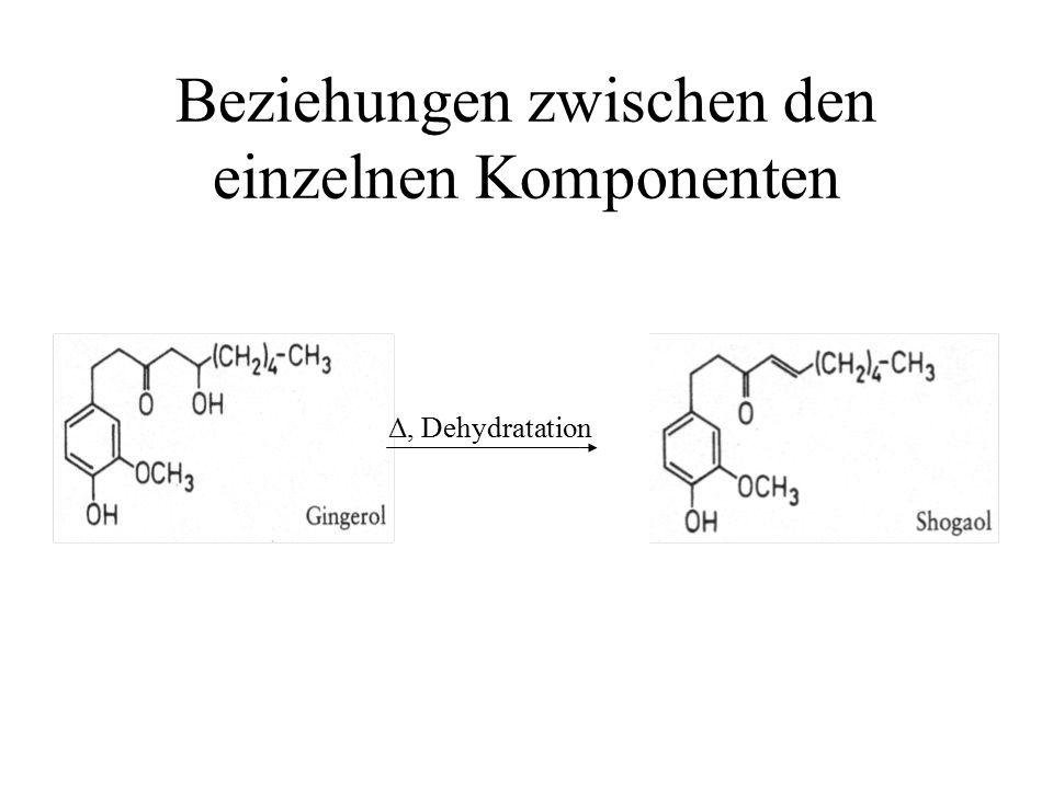 Beziehungen zwischen den einzelnen Komponenten