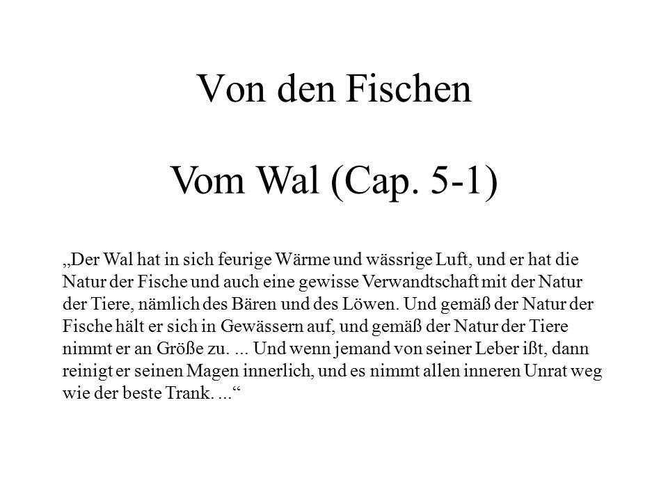 Von den Fischen Vom Wal (Cap. 5-1)