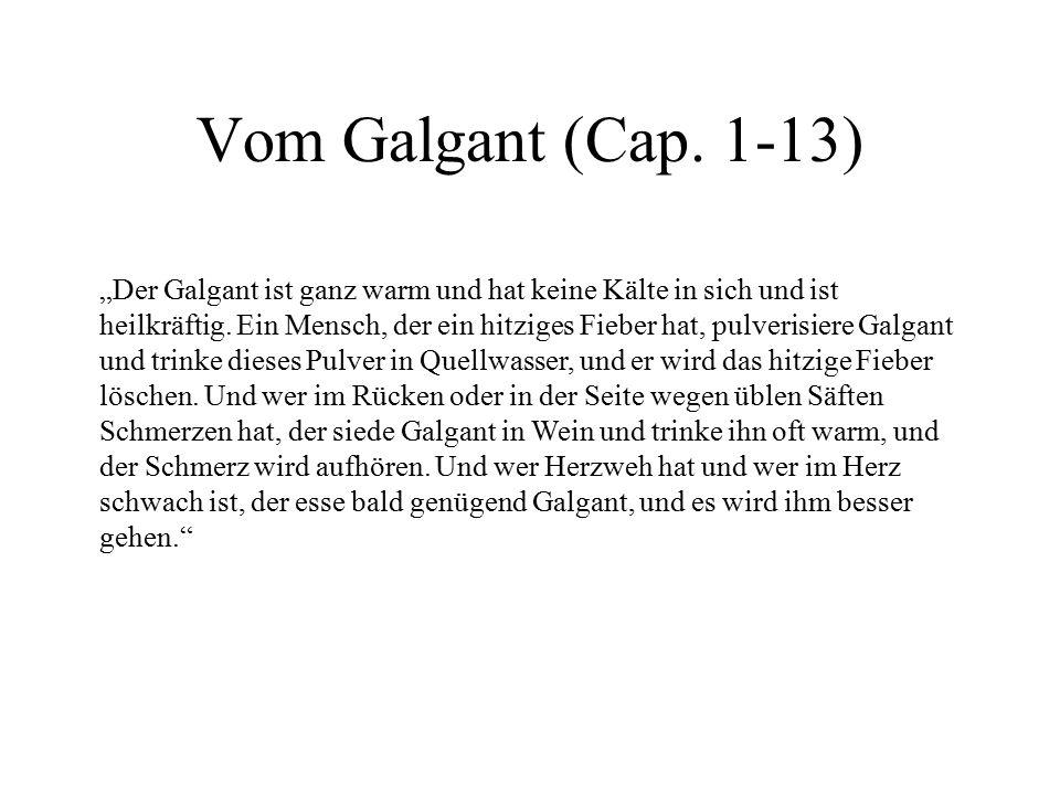 Vom Galgant (Cap. 1-13)