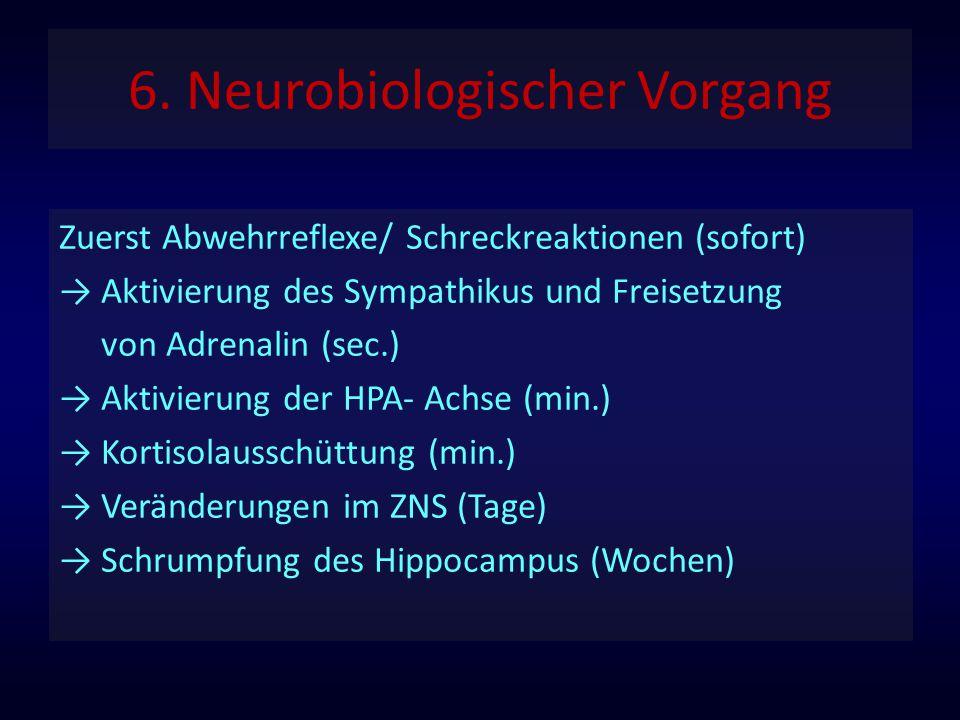 6. Neurobiologischer Vorgang
