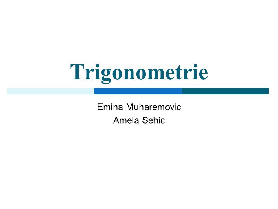 Emina Muharemovic Amela Sehic