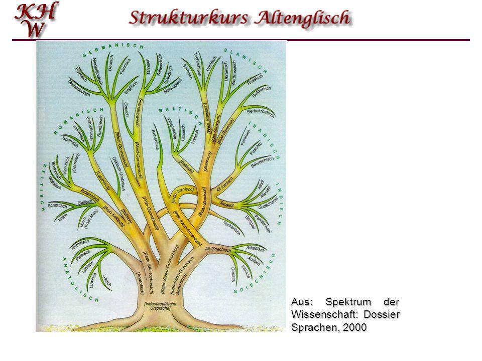 Aus: Spektrum der Wissenschaft: Dossier Sprachen, 2000