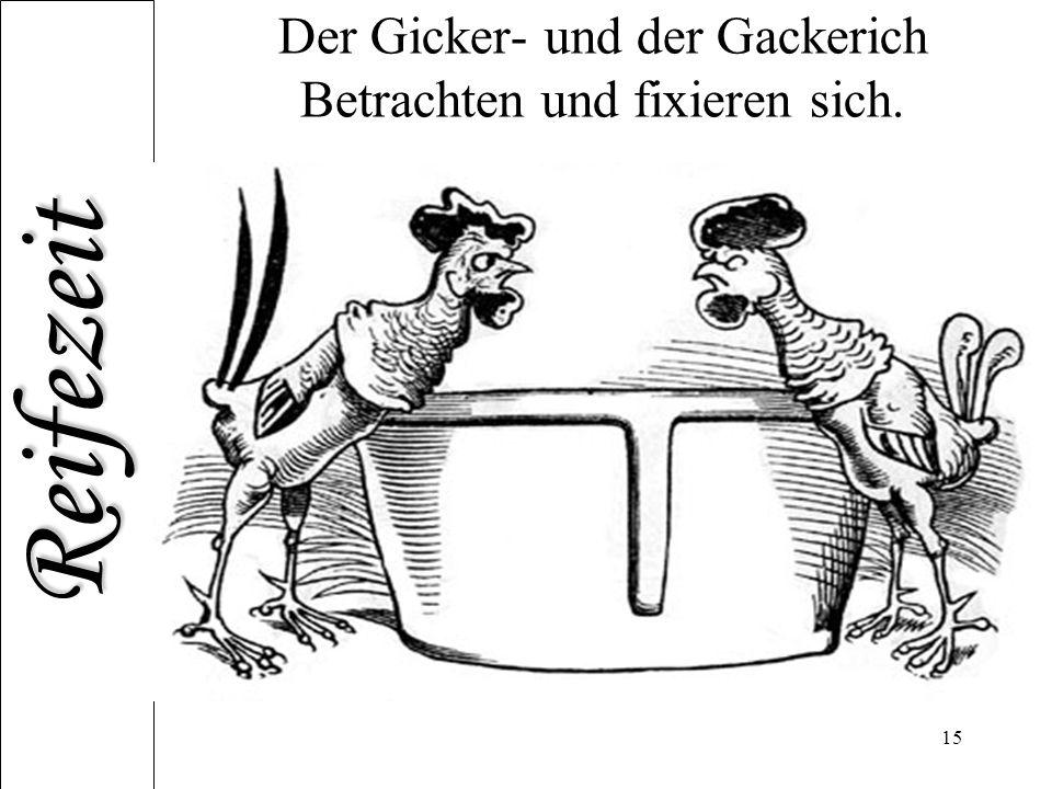 Der Gicker- und der Gackerich Betrachten und fixieren sich.