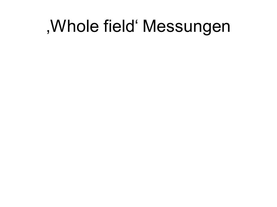 'Whole field' Messungen