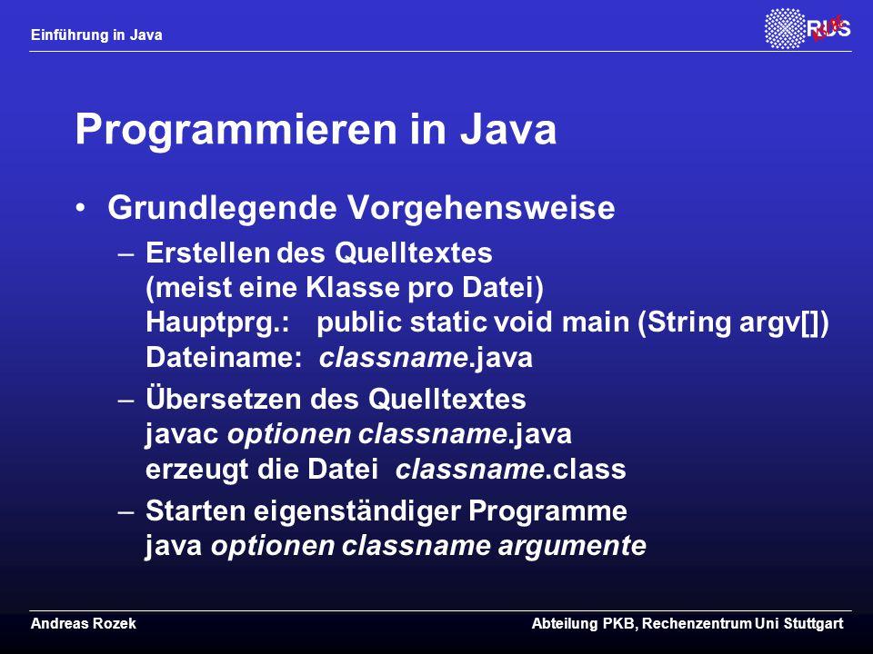 Programmieren in Java Grundlegende Vorgehensweise
