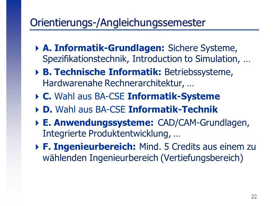 Orientierungs-/Angleichungssemester