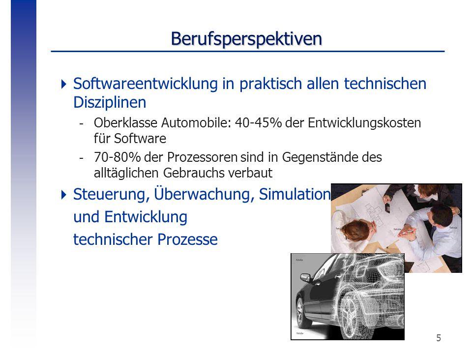 Berufsperspektiven Softwareentwicklung in praktisch allen technischen Disziplinen. Oberklasse Automobile: 40-45% der Entwicklungskosten für Software.