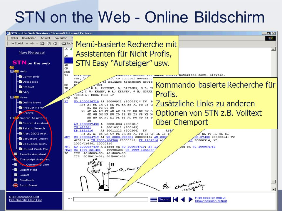 STN on the Web - Online Bildschirm