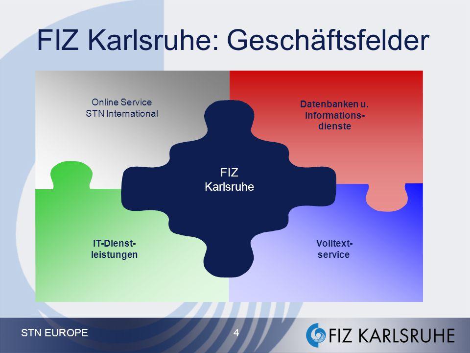 FIZ Karlsruhe: Geschäftsfelder