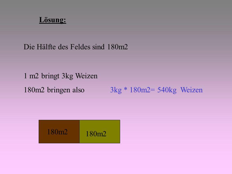 Lösung: Die Hälfte des Feldes sind 180m2. 1 m2 bringt 3kg Weizen. 180m2 bringen also 3kg * 180m2= 540kg Weizen.
