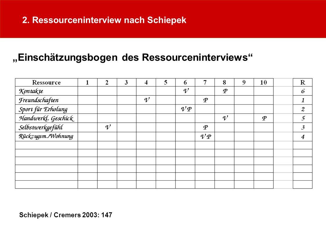 """""""Einschätzungsbogen des Ressourceninterviews"""
