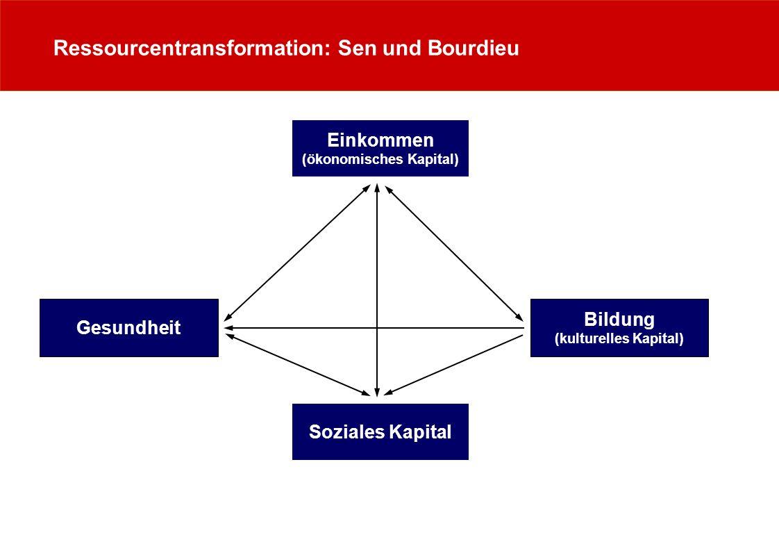 (ökonomisches Kapital) (kulturelles Kapital)