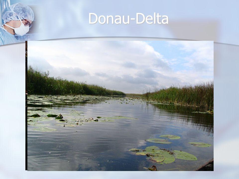 Donau-Delta