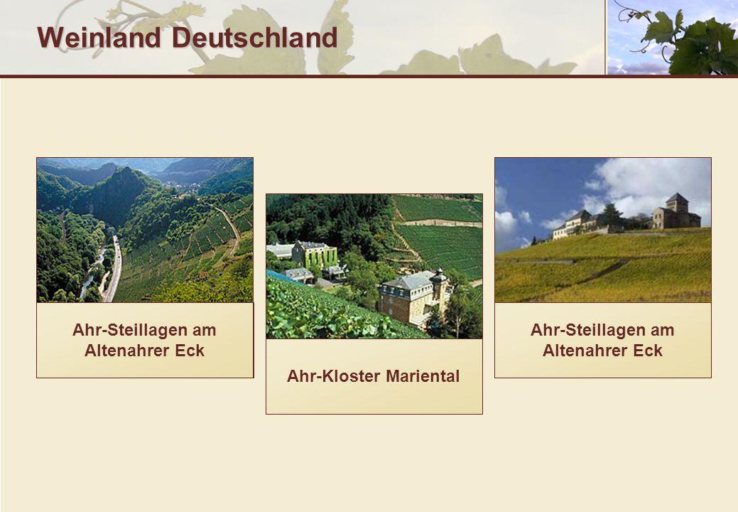 Weinland Deutschland Ahr-Steillagen am Altenahrer Eck