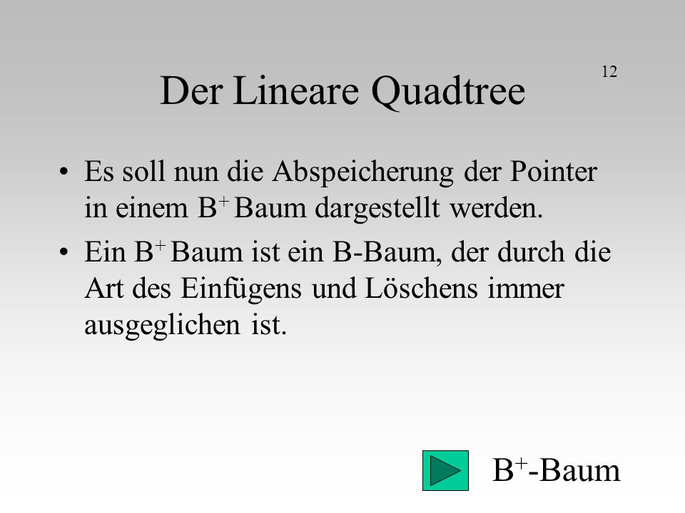 Der Lineare Quadtree B+-Baum