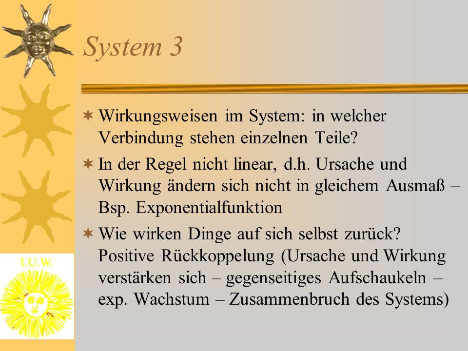 System 3 Wirkungsweisen im System: in welcher Verbindung stehen einzelnen Teile
