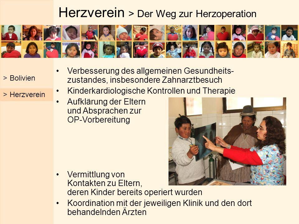 Herzverein > Der Weg zur Herzoperation