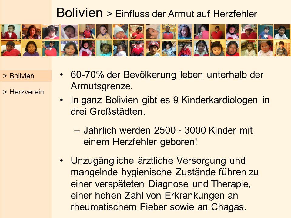 Bolivien > Einfluss der Armut auf Herzfehler