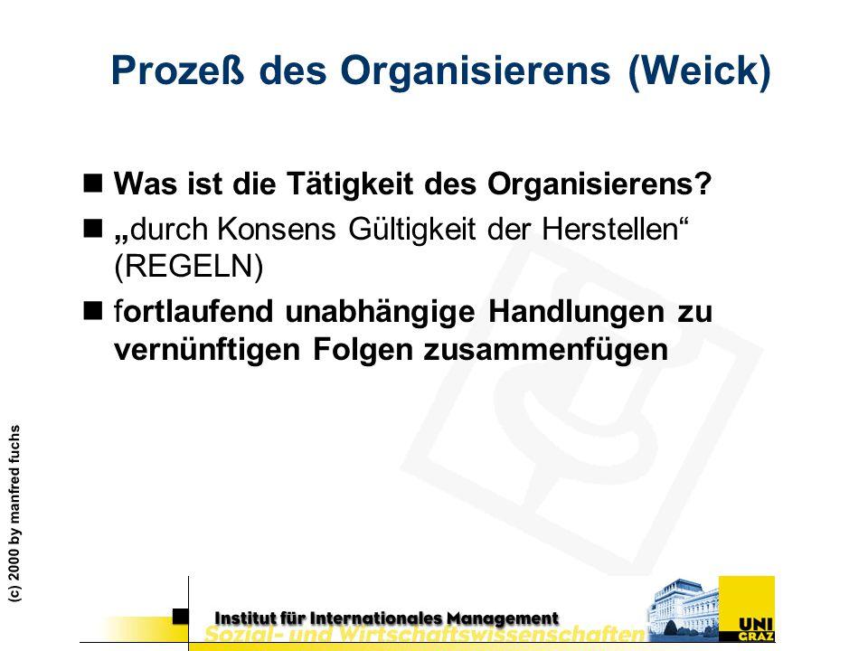 Prozeß des Organisierens (Weick)