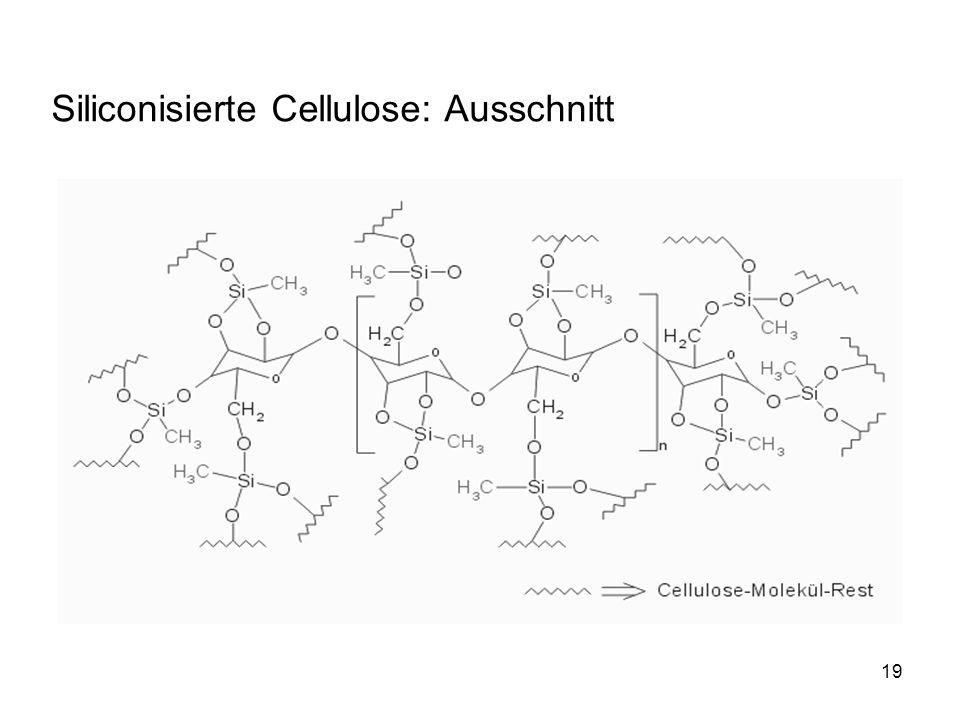 Siliconisierte Cellulose: Ausschnitt