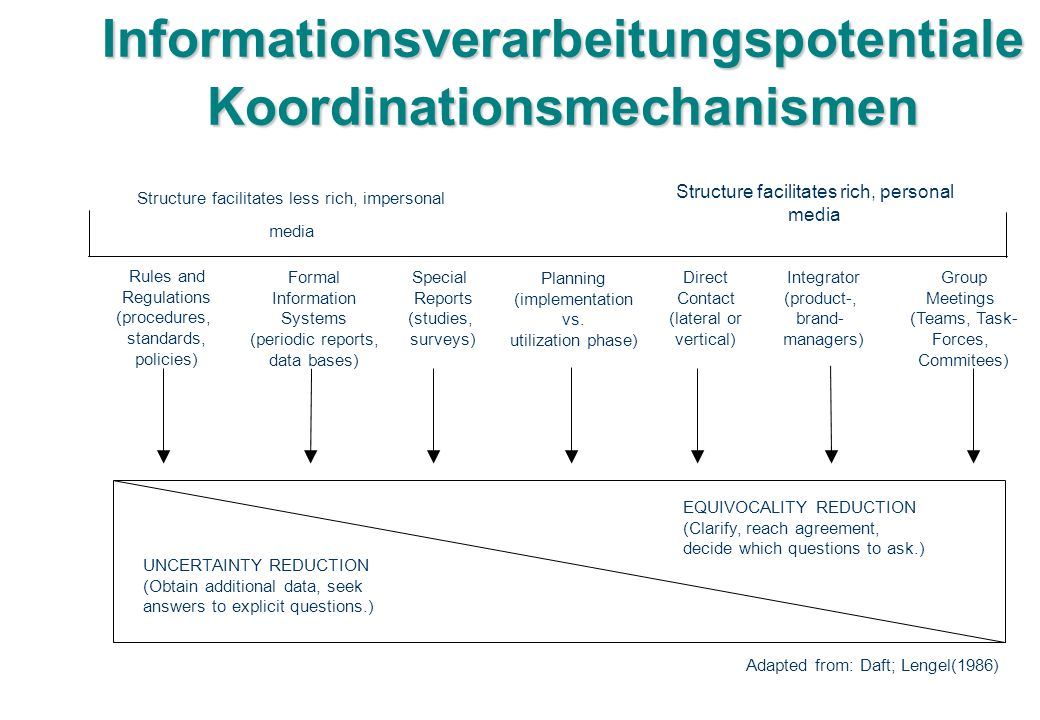 Informationsverarbeitungspotentiale Koordinationsmechanismen