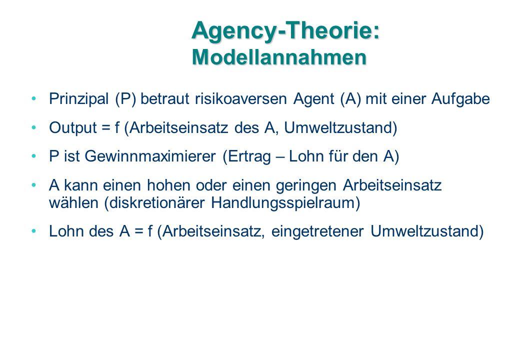 Agency-Theorie: Modellannahmen