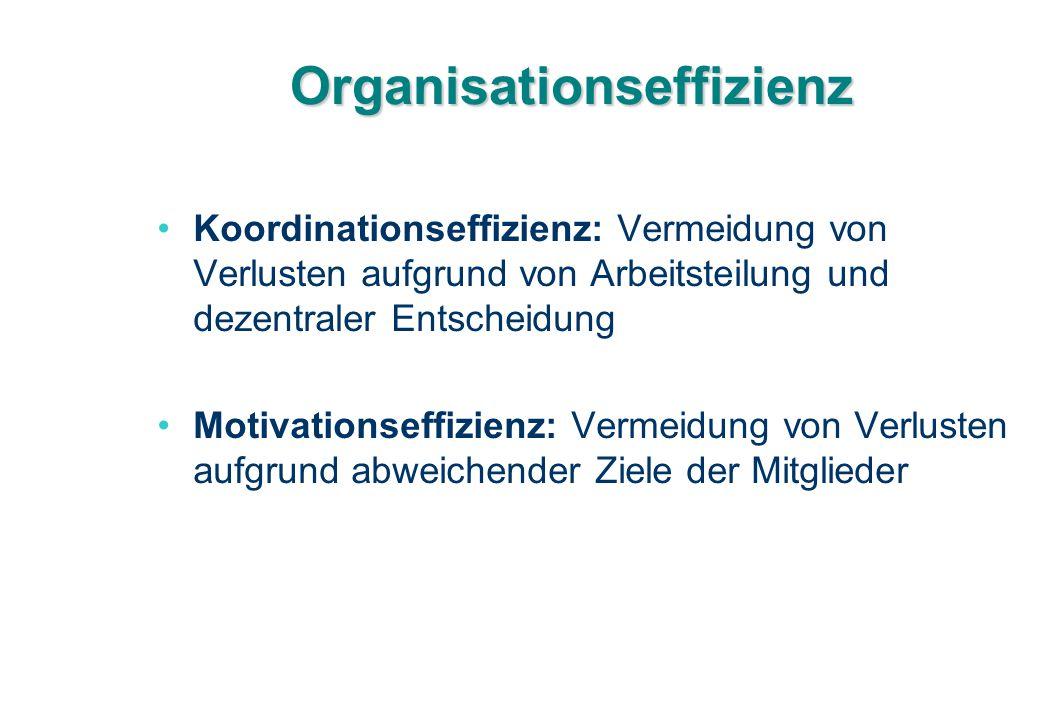 Organisationseffizienz