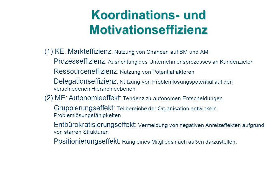 Koordinations- und Motivationseffizienz