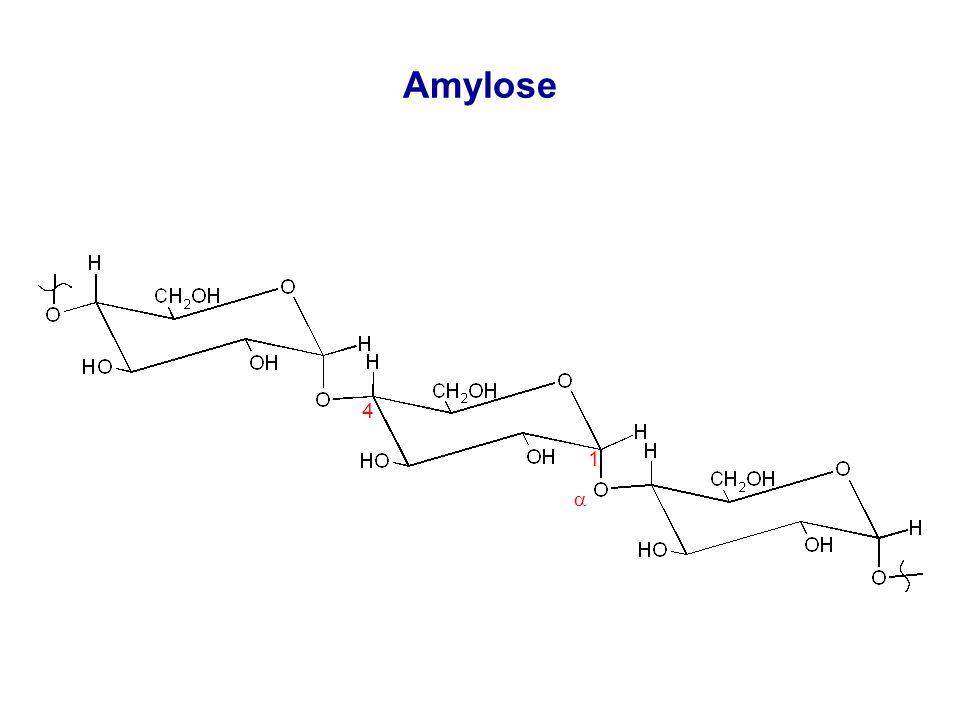 Amylose 1 4  -1,4-glycosidische Bindungen Acetal