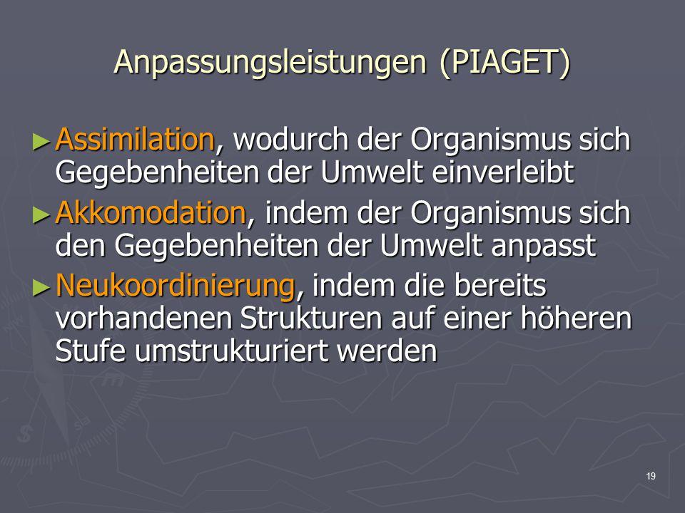 Anpassungsleistungen (PIAGET)
