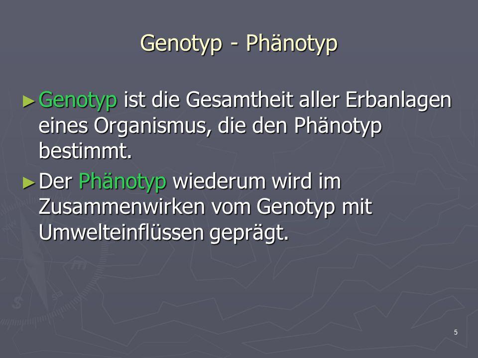 Genotyp - Phänotyp Genotyp ist die Gesamtheit aller Erbanlagen eines Organismus, die den Phänotyp bestimmt.