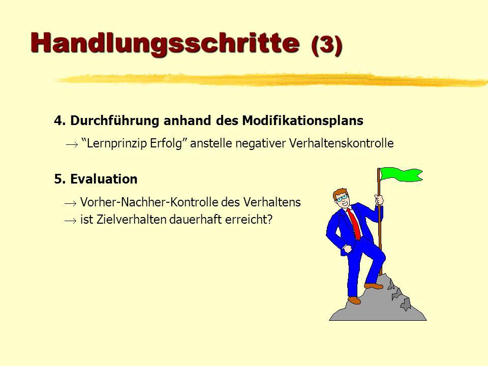 Handlungsschritte (3) 4. Durchführung anhand des Modifikationsplans