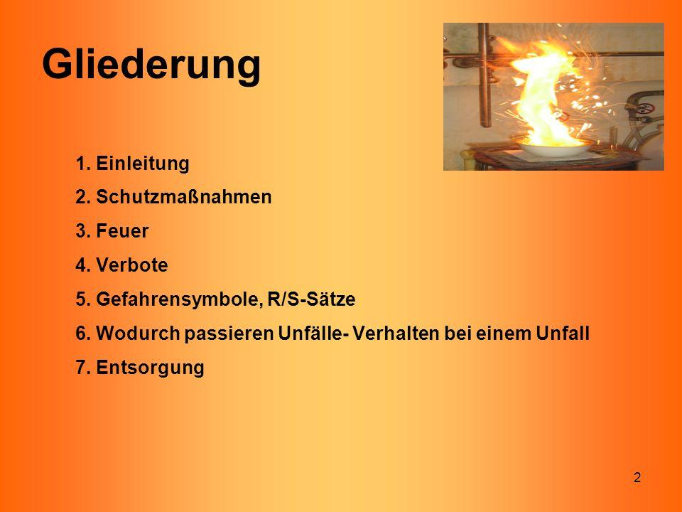 Gliederung 1. Einleitung 2. Schutzmaßnahmen 3. Feuer 4. Verbote