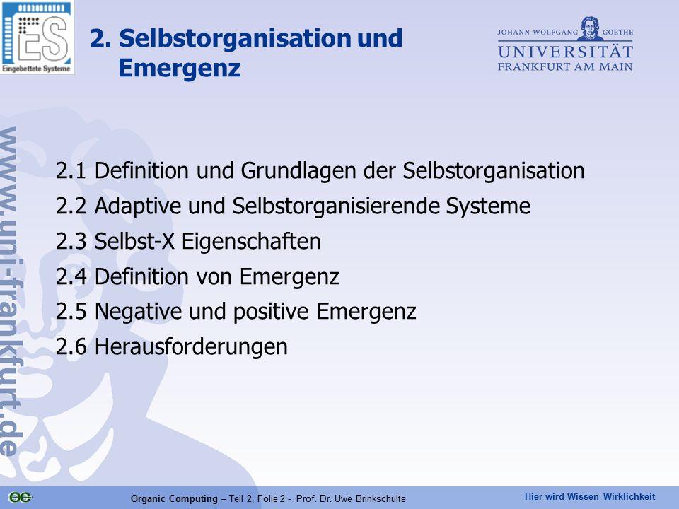 2. Selbstorganisation und Emergenz
