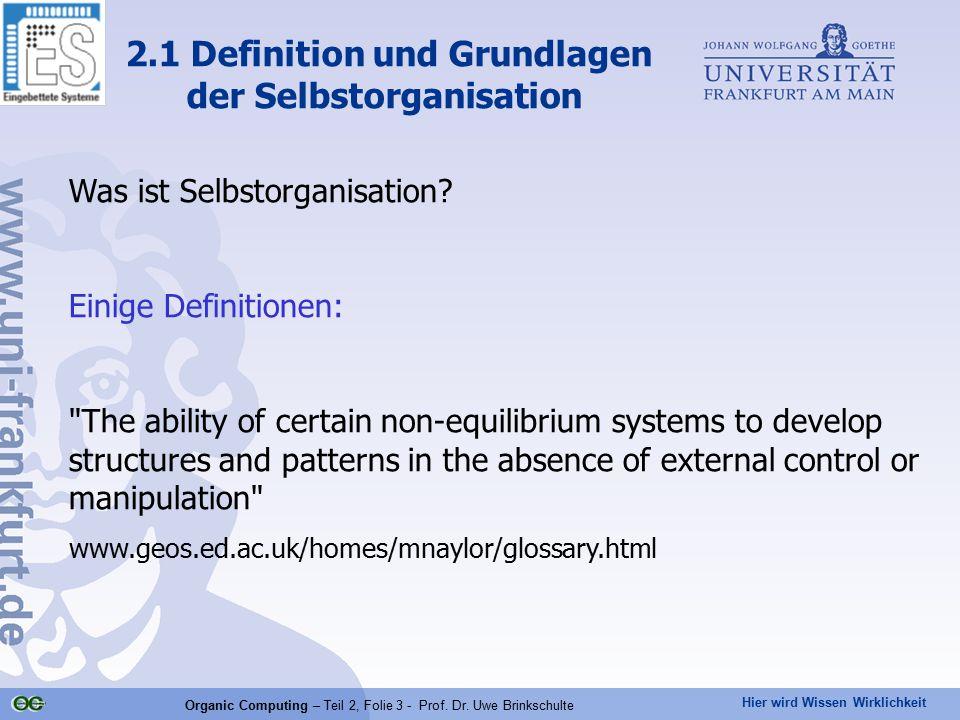 2.1 Definition und Grundlagen der Selbstorganisation
