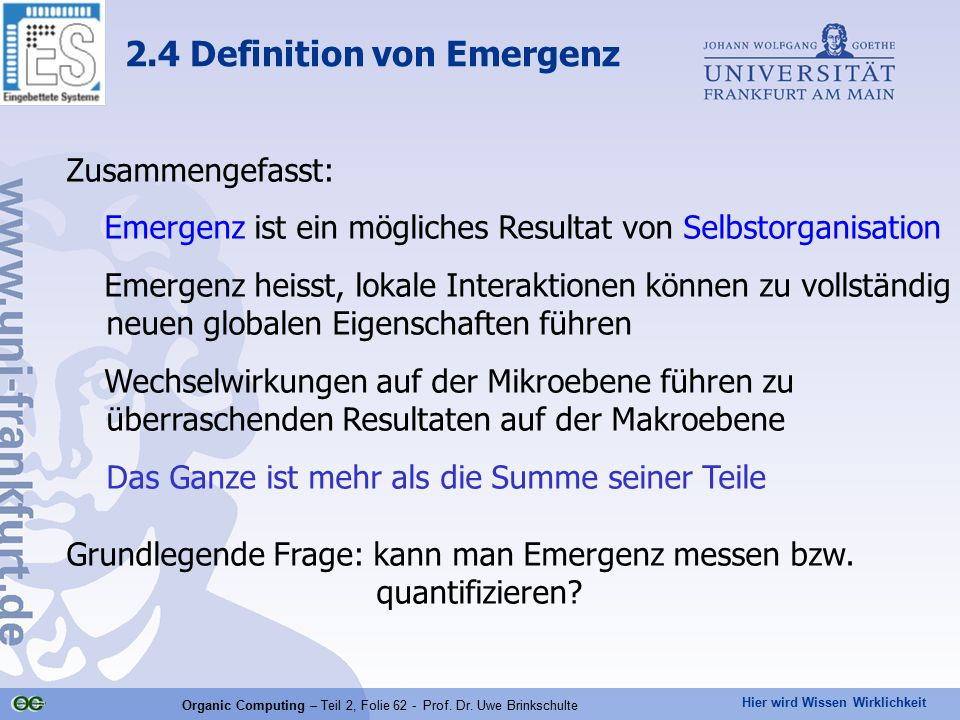2.4 Definition von Emergenz