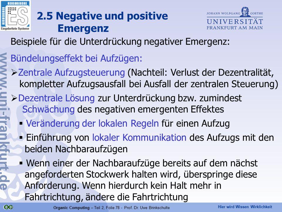 2.5 Negative und positive Emergenz