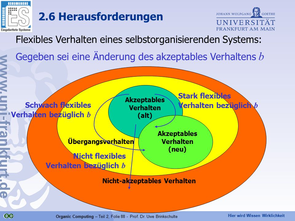 2.6 Herausforderungen Flexibles Verhalten eines selbstorganisierenden Systems: Gegeben sei eine Änderung des akzeptables Verhaltens b.
