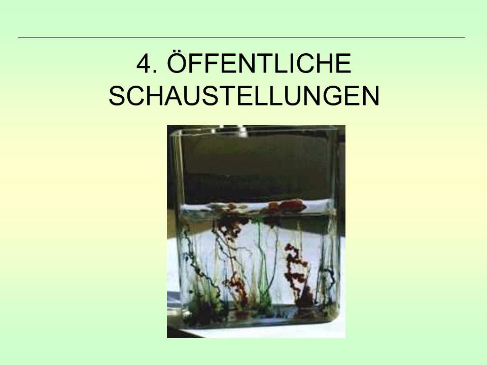 4. ÖFFENTLICHE SCHAUSTELLUNGEN