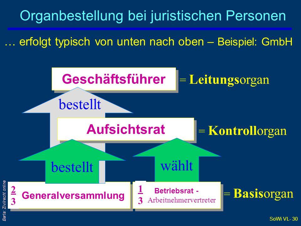Organbestellung bei juristischen Personen