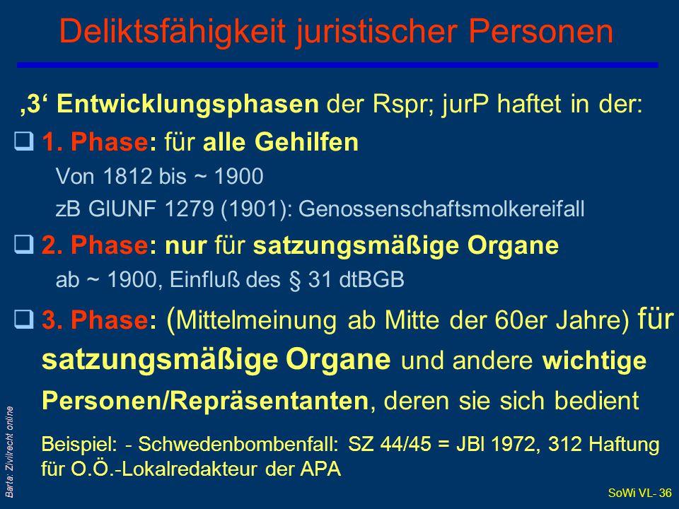 Deliktsfähigkeit juristischer Personen