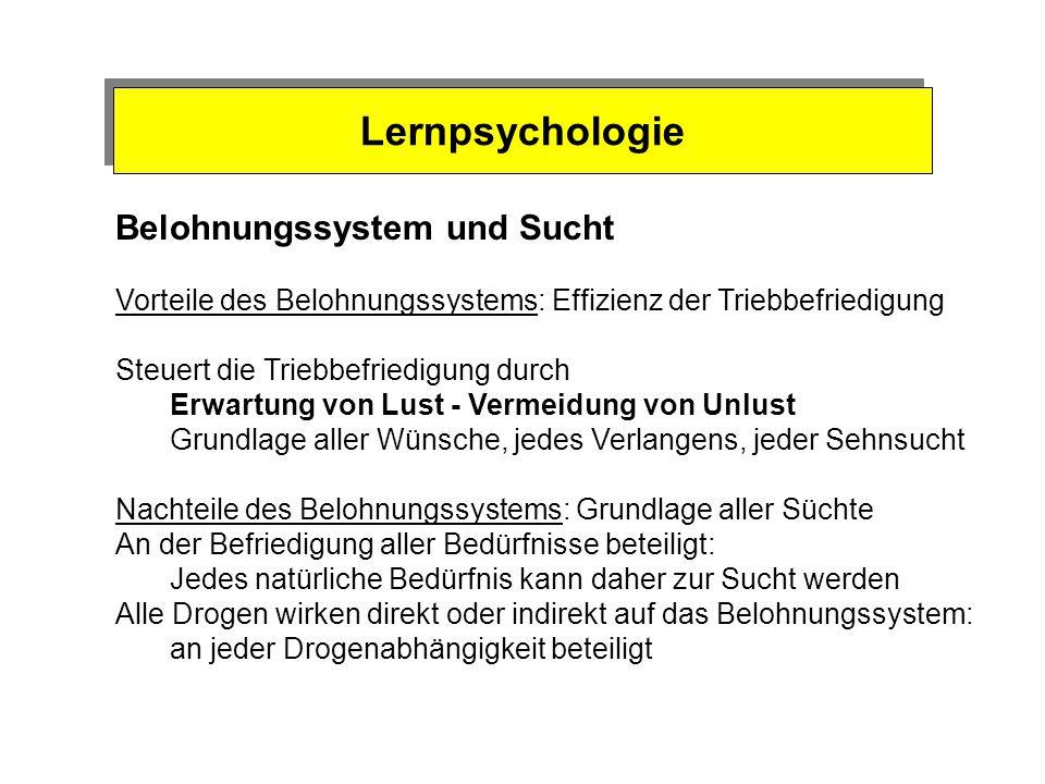 Lernpsychologie Belohnungssystem und Sucht