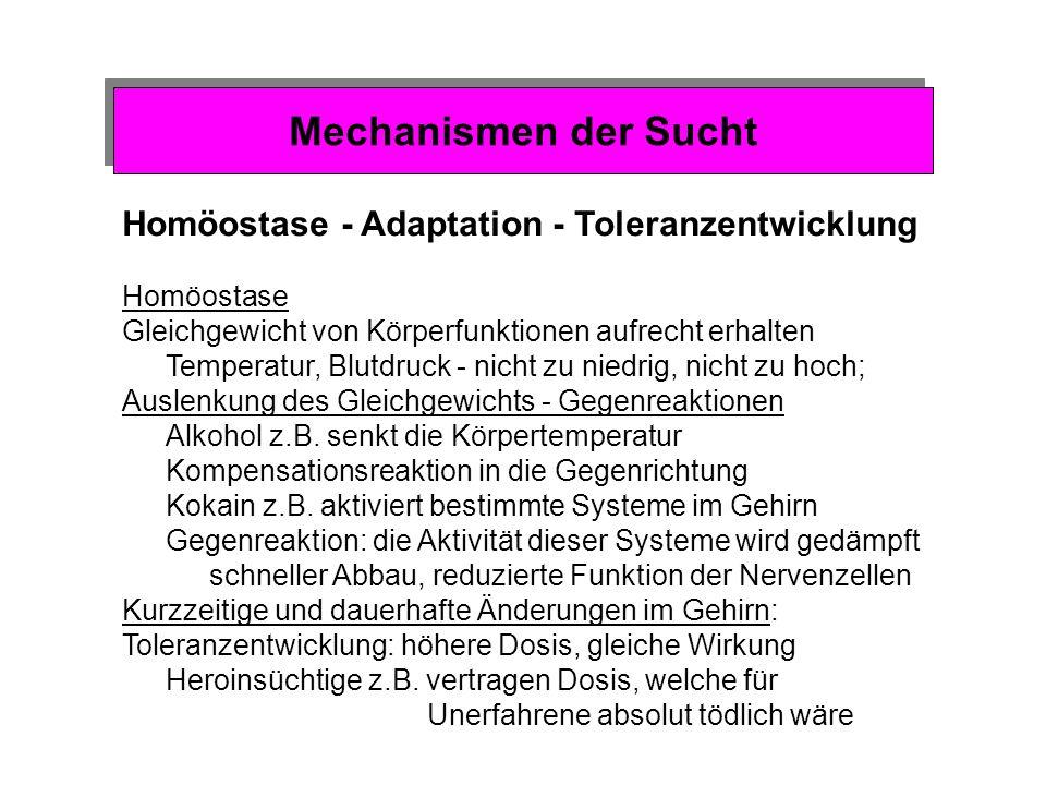Mechanismen der Sucht Homöostase - Adaptation - Toleranzentwicklung