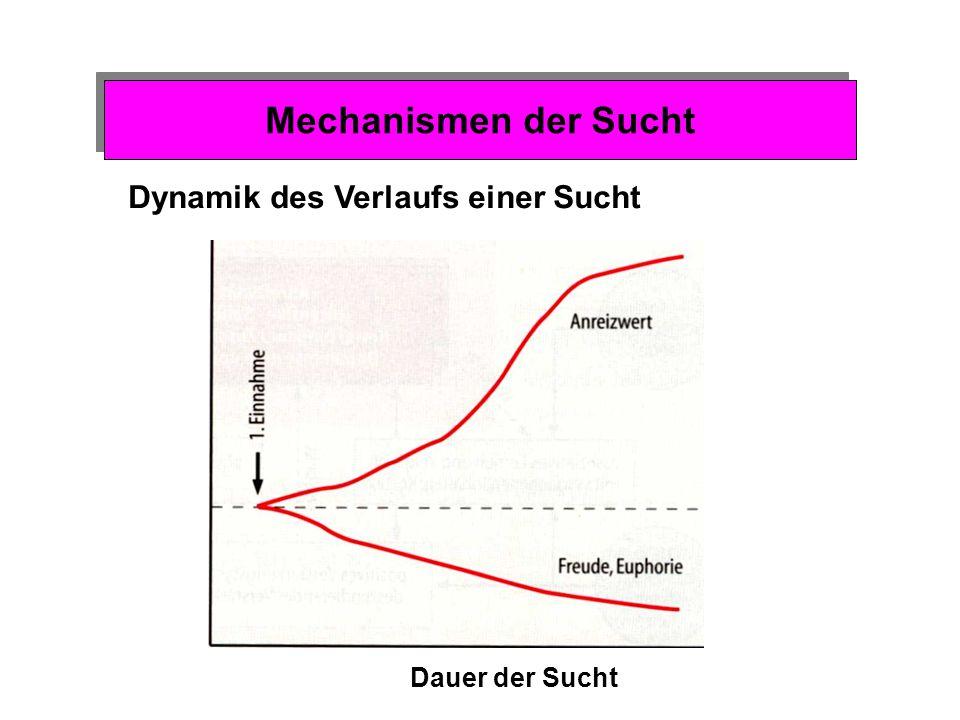 Mechanismen der Sucht Dynamik des Verlaufs einer Sucht Dauer der Sucht